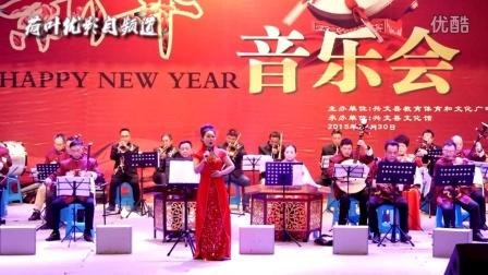 石海之声民乐团2016新年音乐会  荷叶优影自频道