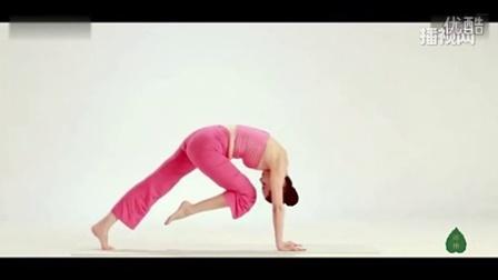 瑜伽初级教程在家练全套 瑜伽初级教程入门基础