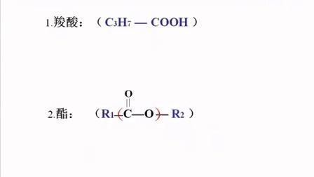 高一化学微课视频《酯》