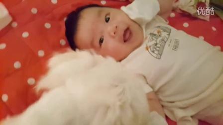 毛孩子是家人~兩個兒子的寶貝時光,要一起長大喲!Cute Puppy and Baby Together!