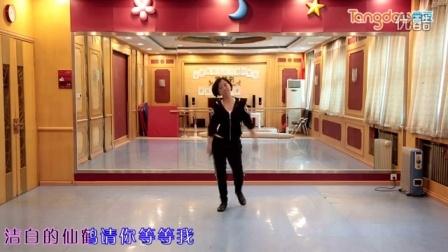 广场舞教学视频藏家乐糖豆广场舞蹈大...