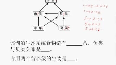 0011.高三生物11生态系统的结构和能量流动