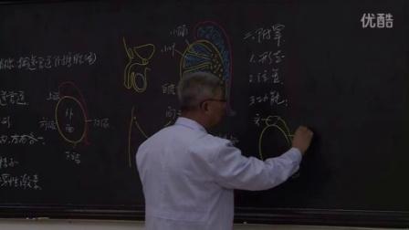 系统解剖学5-1