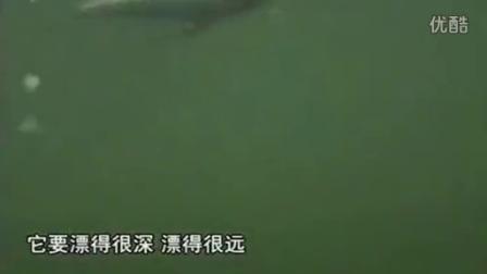 黑龙江省黑河地区有那些水库可以钓鱼