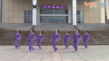 紫蝶踏歌广场舞蝴蝶翩翩飞 糖豆网...