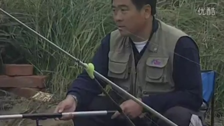 人工和野生的淡水鱼各用什么鱼饵好
