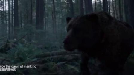《荒野猎人》宣传MV