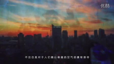 王戎(上苑艺术馆2016国际创作计划 候选人)作品《霾斗》