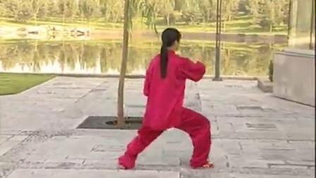 吴阿敏40式太极拳全套示范(背向)