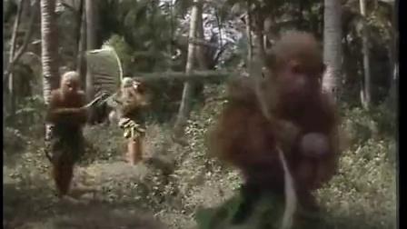 初称美猴王