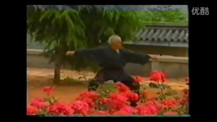少林古拳法系列 猿猴通臂