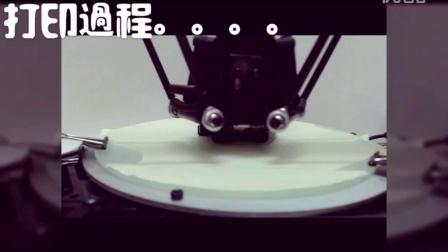 MICROMAKE 3D打印机 打印效果展示---来自 豐益鑫有限公司