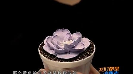 Sweetizens微恬社-多肉植物蛋糕-天津4台我们都是消费者