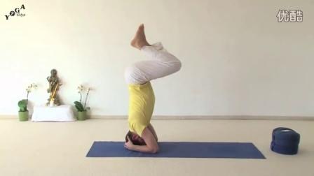 哈他瑜伽系列 20分钟版男子瑜伽训练