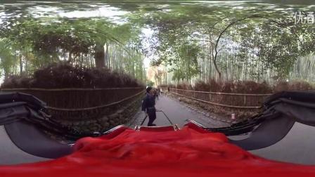 [360度VR全景视频]我们去的车!乘坐360VR虚拟现实[岚山03 ]日本_VR资源网(VRZY.COM)