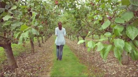 农业+果园+采摘水果高清实拍视频素材