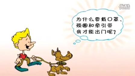 唐伟敏训狗教程下载_快乐训犬跟我学怎么样_训狗技术
