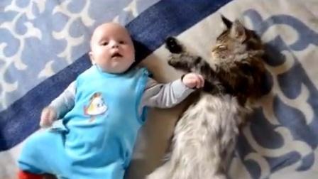 WellTV《爆笑乐园》07-和谐!猫咪和小孩一起玩耍