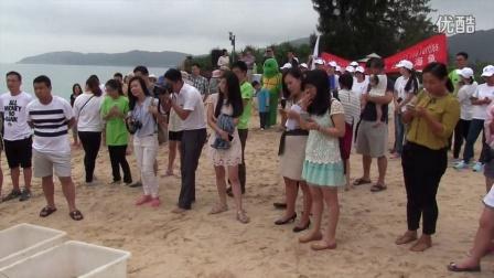 海龟放生Sea Turtle Release