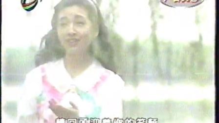 雾里看花 (3)