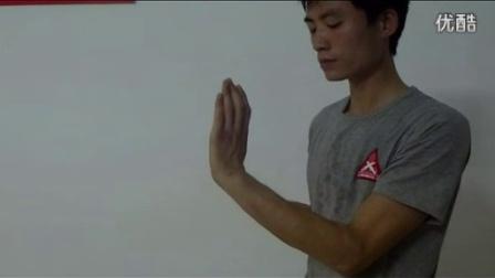 壁华咏春拳社内部训练视频——小念头练习_标清