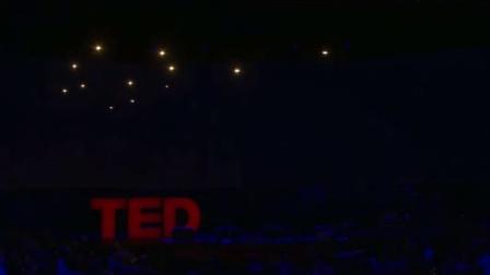 TED昆虫级别无人机演示