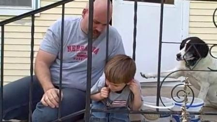 【冯导】小屁孩的头卡入篱笆中,老爸也救不了他还得靠自己