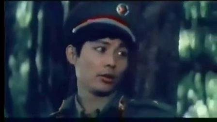 中越战争电影-绿色的网[高清版]_标清