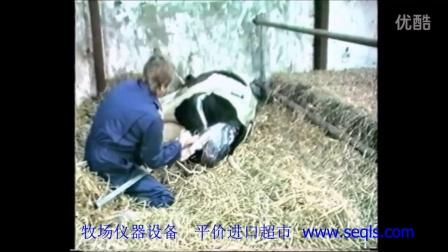 奶牛-助产器-5900-子卓机械平价进口超市-002