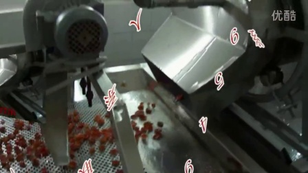 蓝莓分选机,樱桃大小分选机 红枣分级机,核桃分级机,水果分级机,杏分级设备,大小分级机