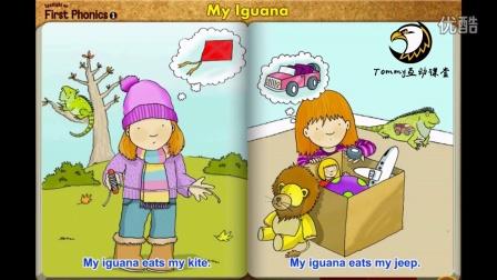 My iguana book