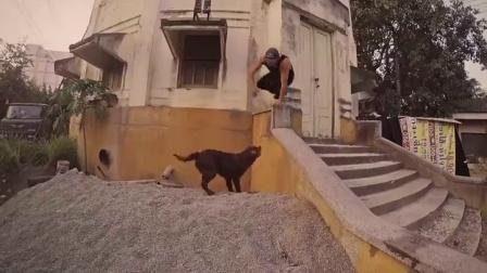 看Jason给你讲述他与一只狗的故事 Freerunning - A Love Story