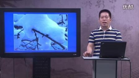 王林波-基于课堂的语文教学1用_clip_标清