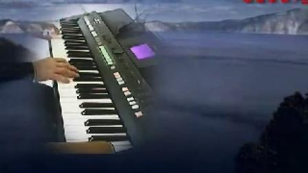 S6560电子琴弹奏【海之梦】