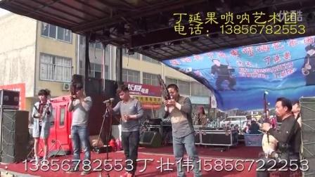 丁延果艺术团现场演出视频  第 1 集
