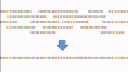 Introduction to genome browsing