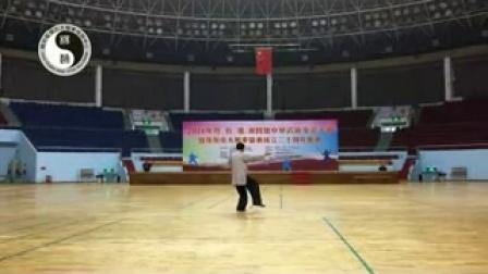 """赵幼斌大师在""""粤、台、港、澳四地中华武术交流大会""""示范太极拳"""