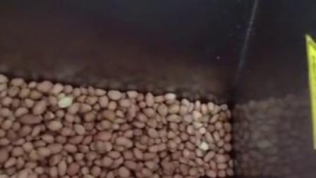 罗密欧三合一智能商用榨油机花生芝麻菜籽茶籽大豆