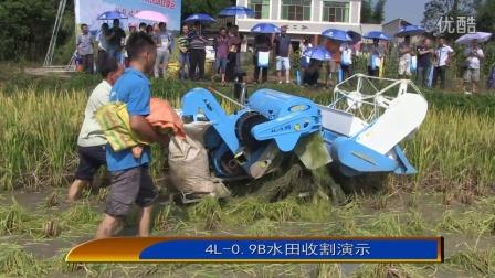 收割机收割水稻小麦演示