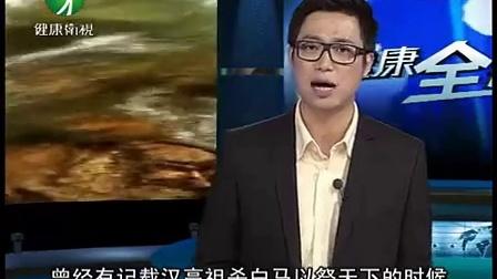 中华武功02奇门兵器_标清