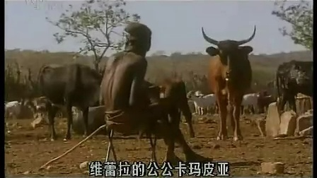 走进原始部落:辛巴族