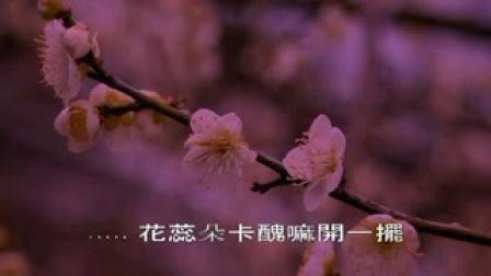 潘越云(閩南語)桂花巷_标清