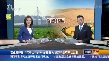 """农业部辟谣""""转基因"""":水稻 紫薯 彩椒都不是转基因品种 新闻夜线 160413"""