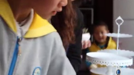 多肉植物diy与蛋糕DIY活动