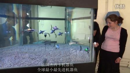 杰西卡机器鱼视频1