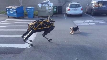 【爱家小哥】爱分享之《连狗都可以被取代了,人类还会远吗?》