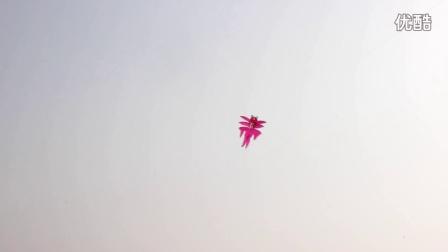 竹条大金鱼风筝放飞视频 传统竹条金鱼风筝 舞蹈道具风筝 展会布展风筝