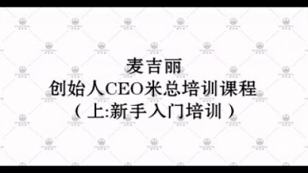 麦吉丽创始人CEO米总培训课程(上:新手入门培训)