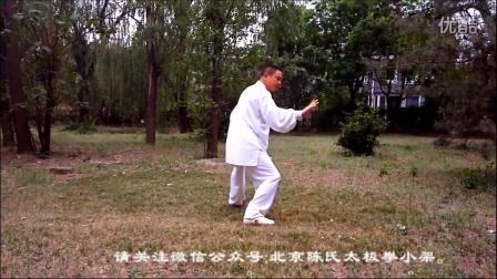 陈伯祥家传弟子陈绍冲演练陈氏太极拳小架初层架