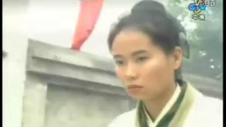 [TW1995]《状元花》赵雅芝叶童15